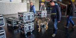 Each box are thoroughly inspected by specially trained sniffer dogs